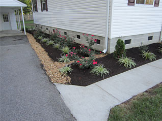 Flower Bed Rejuvenation